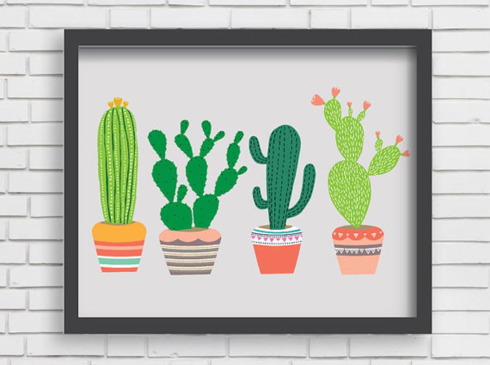 Cactus varianten voor kids