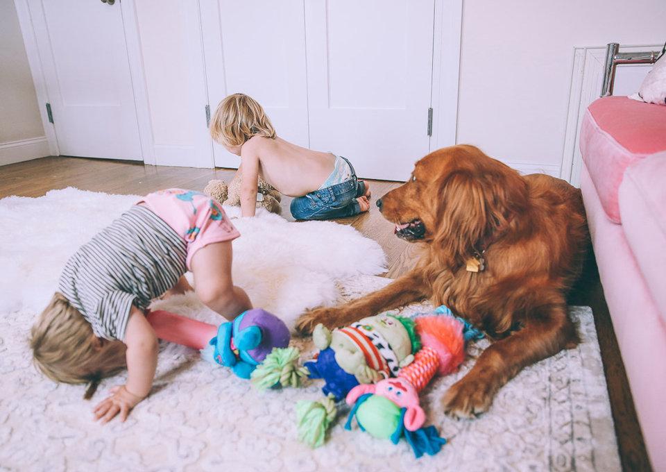 Een baby en huisdieren: hoe laat je ze aan elkaar wennen?