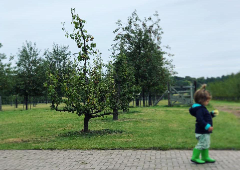 5x Kindvriendelijke hotspots in Eindhoven